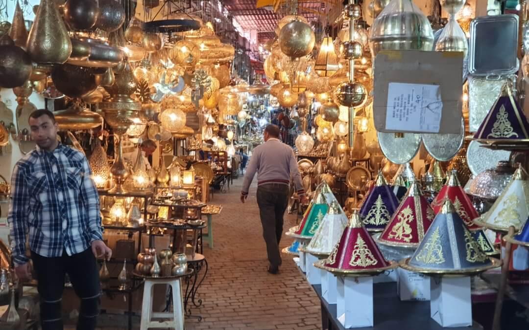 Stray Cats of Marrakesh, Part 2, The Bazaar